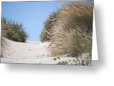 Beach Sand Dunes II Greeting Card