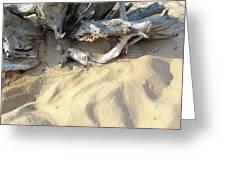 Beach Shore Greeting Card