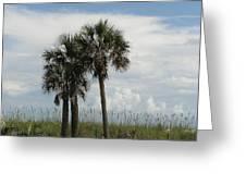 Beach Side Serenity Greeting Card