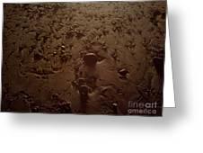 Beach Stones At Night Greeting Card