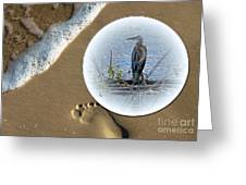 Beached Heron Greeting Card