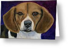 Beagle Puppy Greeting Card