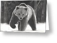 Bear Necessities Greeting Card