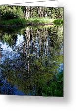 Bear River Reflection Greeting Card