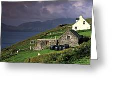 Beara Peninsula, County Cork, Ireland Greeting Card