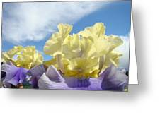 Bearded Iris Flowers Art Prints Floral Irises Greeting Card