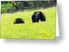 Bears In A Peaceful Meadow1 Greeting Card