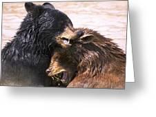 Bears In Water Greeting Card