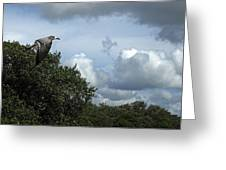 Beat The Storm  Greeting Card