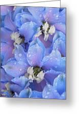 Beautiful Blue Flowers Greeting Card