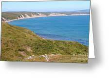 Beautiful Coastline Of Point Reyes California . 7d16050 Greeting Card by Wingsdomain Art and Photography