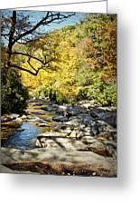 Beautiful Fall Scene Greeting Card