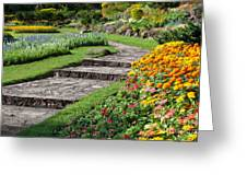 Beautiful Flowers In Park Greeting Card