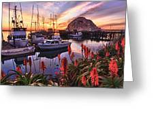 Beautiful Morro Bay Greeting Card