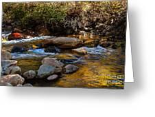 Beautiful Stream Greeting Card