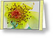 Beautifully Withered Greeting Card