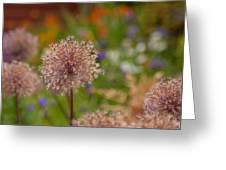 Beauty Clusters Greeting Card