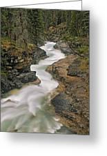 Beauty Creek, Banff National Park Greeting Card