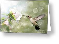 Beauty In Flight Greeting Card by Sari ONeal