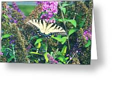 Beauty In Nature Greeting Card