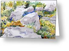 Beauty In The Rocks Greeting Card