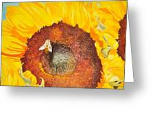 Bee And Sunflowers Greeting Card