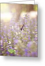 Bee Beeutiful Greeting Card