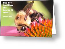 Bee Exchange Greeting Card