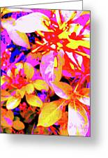 Bee Flowers 11a Greeting Card