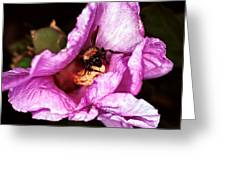 Bee There Greeting Card