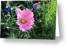 Bees Favorite Flower Two Greeting Card