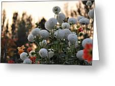 Beginning Of Autumn Greeting Card by Sarai Rachel