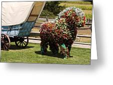 Begonia Horse Greeting Card