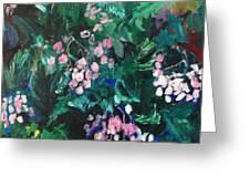 Begonias At Longwood Greeting Card
