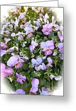 Begonias In Bloom Greeting Card