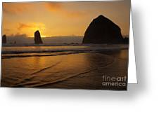 Behind The Needles Greeting Card