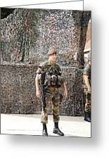 Belgian Soldier On Guard Greeting Card