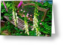 Bench Among The Foxgloves Greeting Card