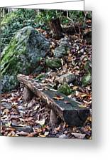 Bench Beside The Trail To Cascade Falls Greeting Card