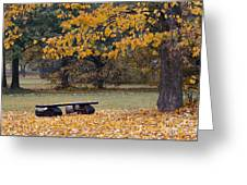 Bench In The Autumn Landscape Greeting Card