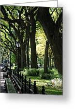 Benches Trees And Lamps Greeting Card