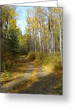 Bend In The Trail Greeting Card