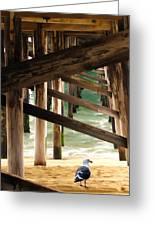 Beneath The Pier Greeting Card
