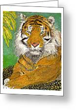 Bengal Tiger With Green Eyes Greeting Card by Jack Pumphrey