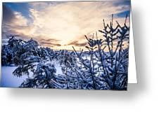 Bergen Winter Greeting Card