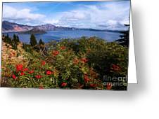 Berries By The Lake Greeting Card