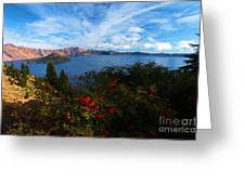 Berries On The Crater Greeting Card