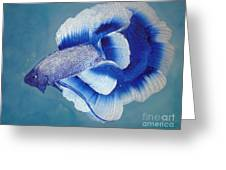 Betta Greeting Card