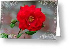 Betty's Red Rose Greeting Card