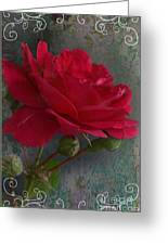 Betty's Red Rose II With Decorations Greeting Card